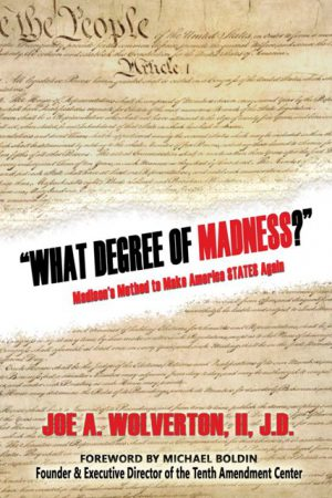 What Degree of Madness WEB 300x450 - What Degree of Madness?